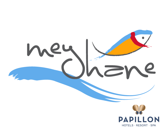 Papillon meyhane logo